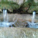 Rosa-Maria-Cursa-Agua